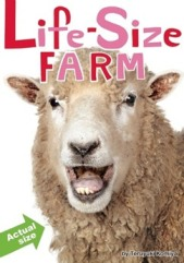 life-size-farm